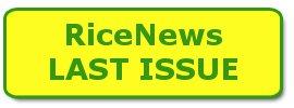 Tasto Latest Number rice news